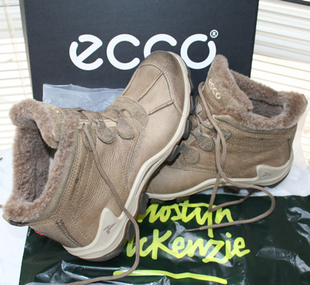 Ecco Terra Ankle Boots